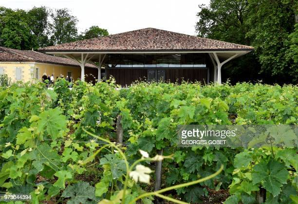 This photo taken on June 11 2018 shows the outside of Chateau Margaux' wine cellar by Norman Foster near Bordeaux western France The Chateau Margaux...
