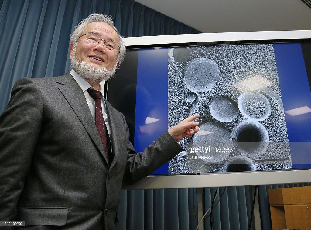 JAPAN-NOBEL-MEDICINE-AWARD-SCIENCE-HEALTH-RESEARCH : News Photo