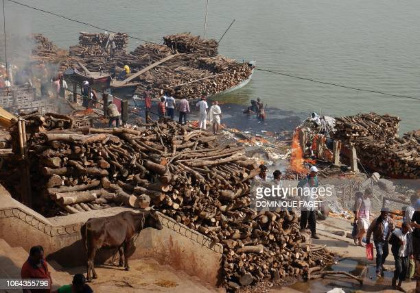 This photo taken on November 14, 2018 shows the stacks of wood used in the traditional crematorium grounds at Manikarnika Ghat on the Ganges river in...