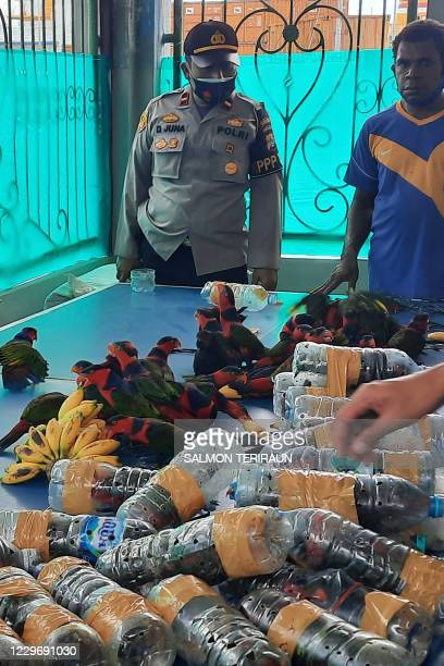 This photo taken on November 19 2020 shows officials freeing dozens of parrots after they were found stuffed in plastic water bottles on a ship...