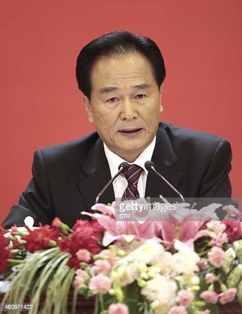 This photo taken on November 7, 2012 shows Cai Mingzhao attending a press conference during the18th National Congress of the Communist Party of China...