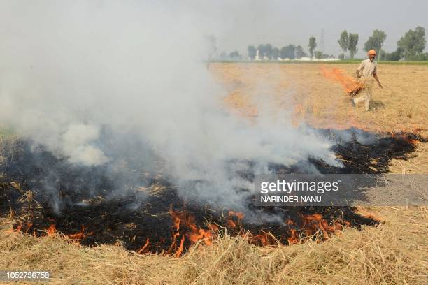 This photo taken on October 17 2018 shows an Indian farmer burning straw stubble after harvesting the paddy crops in a field on the outskirts of...
