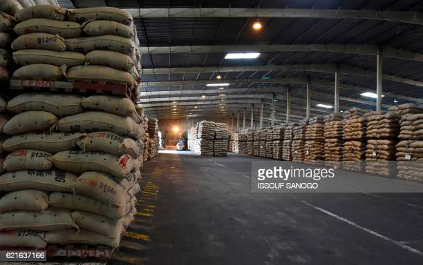 This photo taken on October 31 2016 in Abidjan shows bags of cocoa beans at a warehouse for the French Cemoi Chocolate company / AFP PHOTO / ISSOUF...