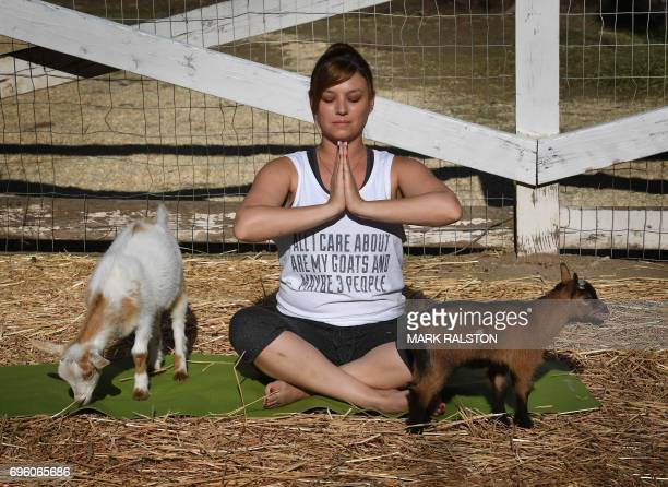 TOPSHOT This photo taken on on June 4 2017 shows Stephanie Allis struggling to maintain her concentration as a baby goat gets close during a Goat...