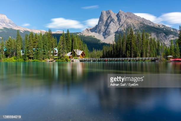 this photograph is from emerald lake which is located in yoho national park, bc, canada. - british columbia stock pictures, royalty-free photos & images