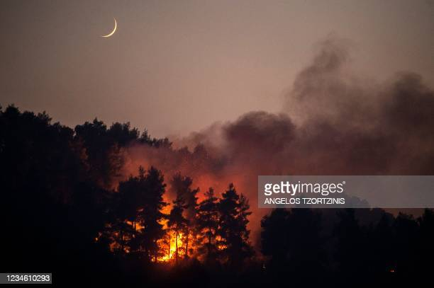 This photograph shows a forest fire in the village of Gouves on Evia island, on August 10, 2021. - Nearly 900 firefighters, reinforced overnight with...