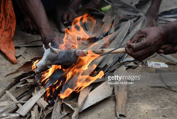 This photograph taken on August 18 2017 shows a member of the Musahar community roasting a rat at Alampur Gonpura village in the eastern Indian state...