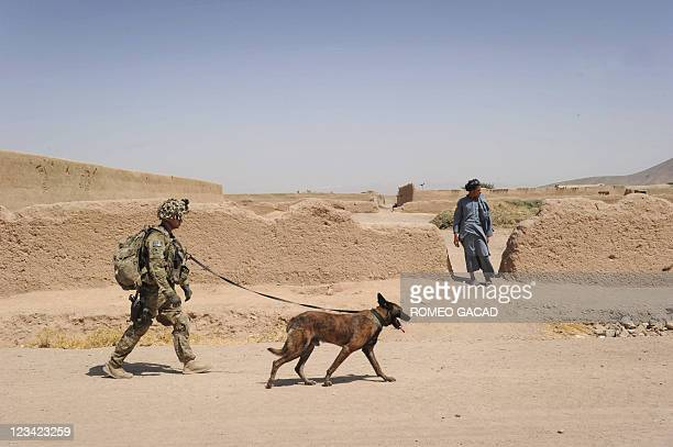 This photograph taken on August 5 2011 shows US Army Specialist Justin Coletti of US Forces Afghanistan K9 combat tracker team and Dasty a Belgian...