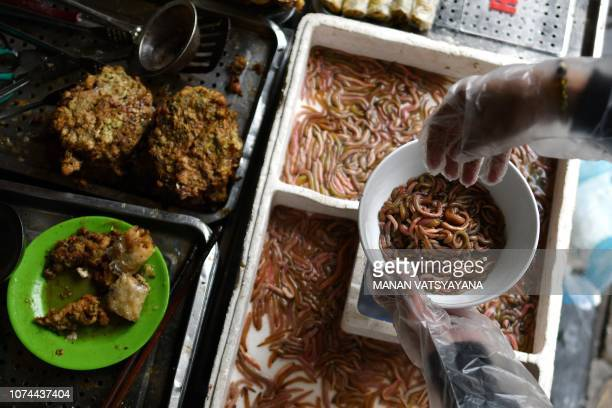 TOPSHOT This photograph taken on December 14 2018 shows Vietnamese woman Bui Thi Nga putting 'cha ruoi' ragworms in a bowl to prepare patties at her...
