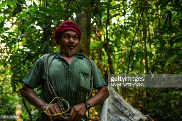 This photograph taken on February 11 2018 shows traditional Malaysian honey hunter Zaini Abdul Hamid tying a rope to his waist before climbing to fix...