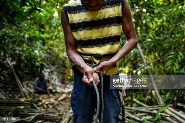 This photograph taken on February 11 2018 shows traditional Malaysian honey hunter Abdul Samad Ahmad tying a rope to his waist before climbing to fix...