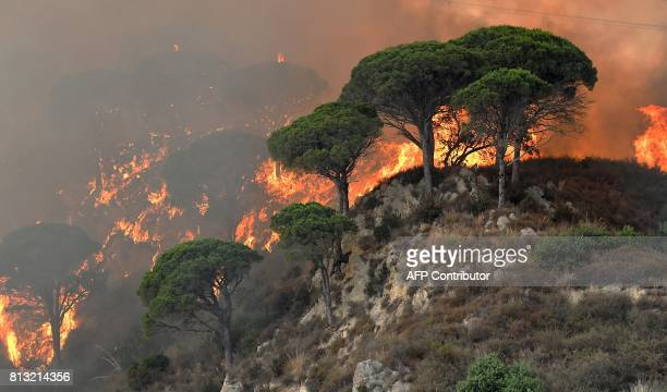This photograph taken on July 10 shows fire ravaging a hill in the Annunziata district of Messina Across the country Italian firefighters have...