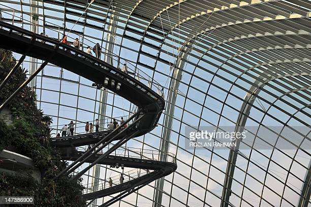 This photograph taken on June 28 shows visitors walking inside the cool conservatory dome at the Garden by the Bay in Singapore Situated at the heart...