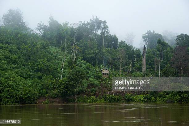This photograph taken on June 4 2012 shows a settler's house in a forest clearing in Central Kalimantan province in Borneo island of Indonesia home...
