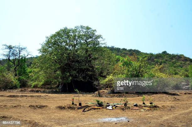 This photograph taken on March 17 shows a general view of the location where the body of Irish tourist Danielle McLaughlin was found in Canacona some...