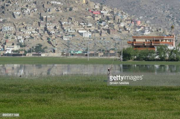 This photograph taken on May 29 2017 shows birdwatchers on a small craft at the Kole Hashmat Khan wetland in the outskirts of Kabul A rare Afghan...