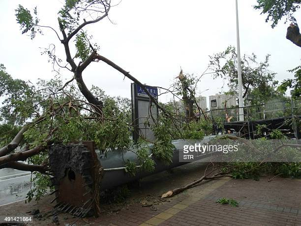 This photograph taken on October 4 2015 shows a billboard blown down during tornadoes after typhoon Mujigae swept the area in Zhanjiang south China's...