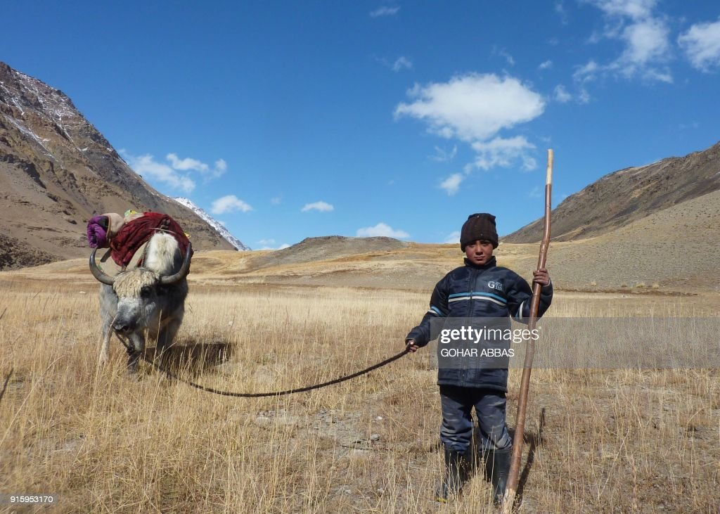 This photograph taken on October 7, 2017 shows an Afghan Wakhi nomad child standing with his yak in the Wakhan Corridor in Afghanistan. The region is so remote that its residents, known as the Wakhi - a tribe of roughly 12,000 nomadic people who populate the area - are untouched by decades of conflict devastating their country. / AFP PHOTO / Gohar ABBAS / TO GO WITH Afghanistan-Wakhan-Taliban-war,FEATURE by Gohar Abbas