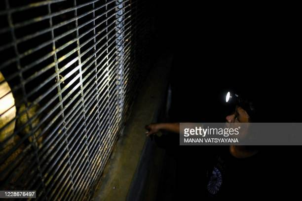 This photograph taken on September 14, 2020 shows wildlife keeper Dinh Van Tuan conducting evening inspection on a pangolin enclosure at Save...