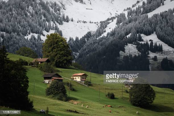 This photograph taken on September 26, 2020 shows chalets near fresh snow in Kiental, Bernese Oberland as cold winds and a sharp drop in temperatures...