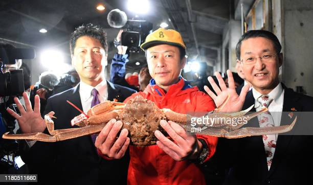 This picture shows a snow crab, sold for a record of 46,000 USD at an auction, in Tottori city on November 7, 2019. - A Japanese bidder may be...