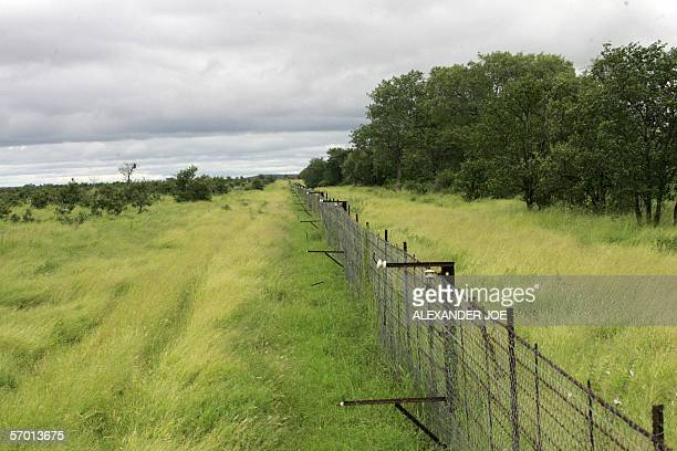 This picture taken 04 March 2006 in Kruger Park shows a an electric fence protecting trees from elephants One of the world's most splendid oases for...
