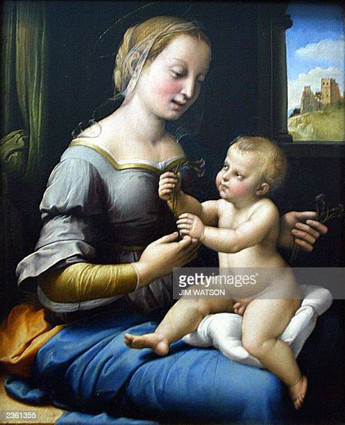This picture taken 24 July 2003 shows Raphael's'Madonna of the Pinks' on display in the National Gallery in London The painting which has long been...