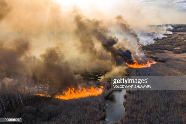 This picture taken on April 10 shows a field fire burning at a 30kilometer Chernobyl exclusion zone not far from the nuclear power plant