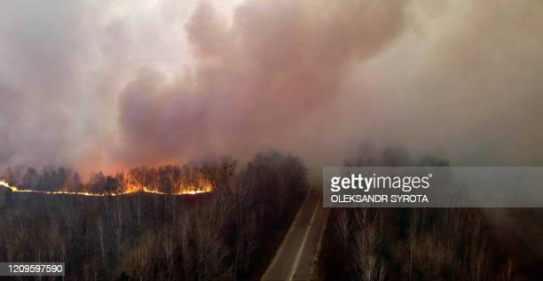 This picture taken on April 10 shows a forest fire burning at a 30-kilometer Chernobyl exclusion zone, not far from the nuclear power plant.