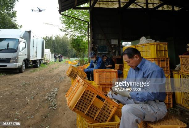 This picture taken on April 12 2018 shows Japanese farmer Takao Shito and his colleagues working on a farm encircled by Narita airport Tokyo's main...