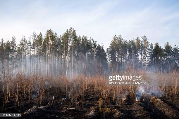 This picture taken on April 12 2020 shows a forest fire burning at a 30kilometer Chernobyl exclusion zone in Ukraine not far from the nuclear power...