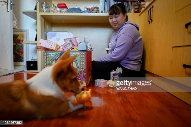 """This picture taken on April 13, 2021 shows music student Wang Zhaoxue looking at her dog playing with a """"blind box"""" toy at her home in Beijing. - The..."""