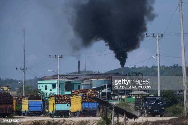 This picture taken on April 15 2018 show thick smoke spewing from a crude palm oil factory in Langsa Aceh province The European Parliament earlier...