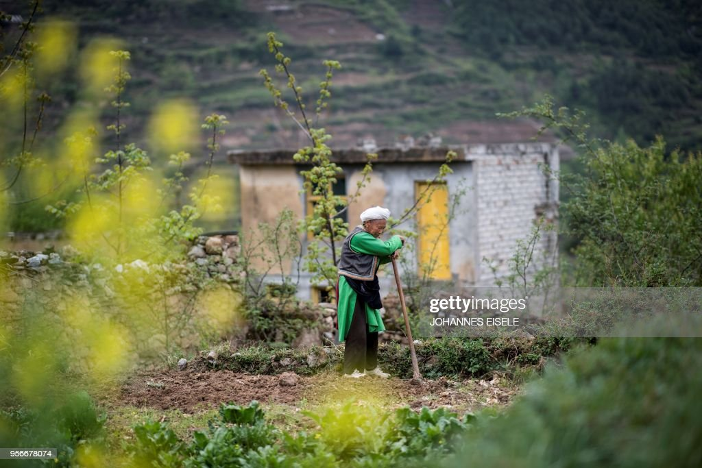 This picture taken on April 22, 2018 shows an elderly woman resting on her shovel while she gardens near her home in the old village of Luobozhai (Radish Village), which was damaged during the 2008 Sichuan earthquake, in Wenchuan county, Sichuan province. - The village, on a small plateau near the top of a mountain, was badly damaged in the earthquake and most of the villagers moved to a new village nearby. China on May 12, 2018 will mark the 10-year anniversary of the quake which killed some 87,000 people across Sichuan province.