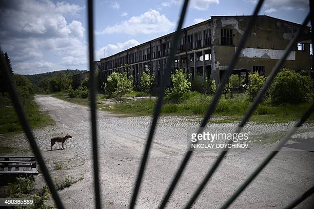 This picture taken on April 29 2014 shows a view through the closed gate of a former factory in the town of Brusartsi some 160 km north from...