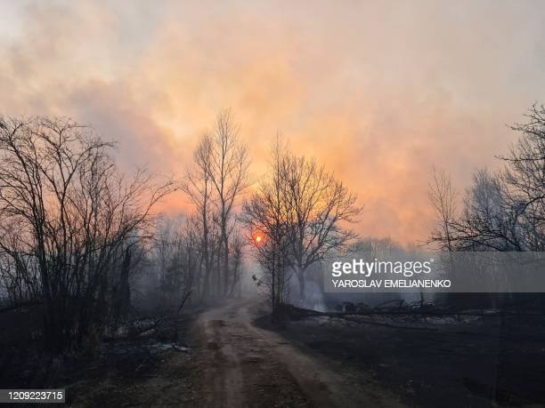 This picture taken on April 5 shows a forest fire burning at a 30-kilometer Chernobyl exclusion zone, not far from the nuclear power plant. -...