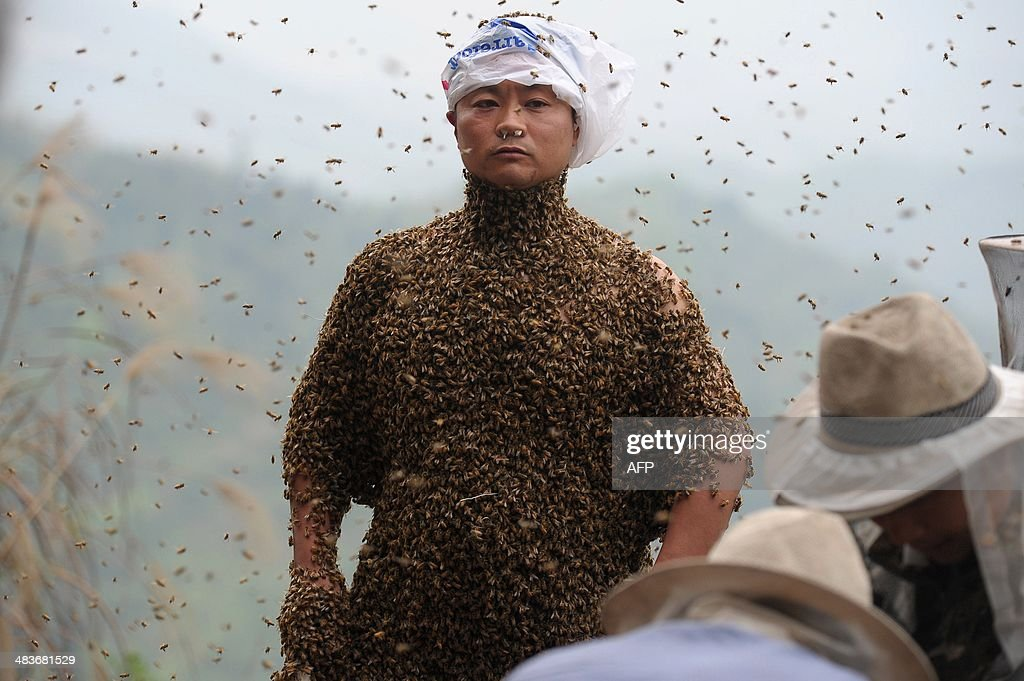 CHINA-PEOPLE-BEE WEARING : News Photo