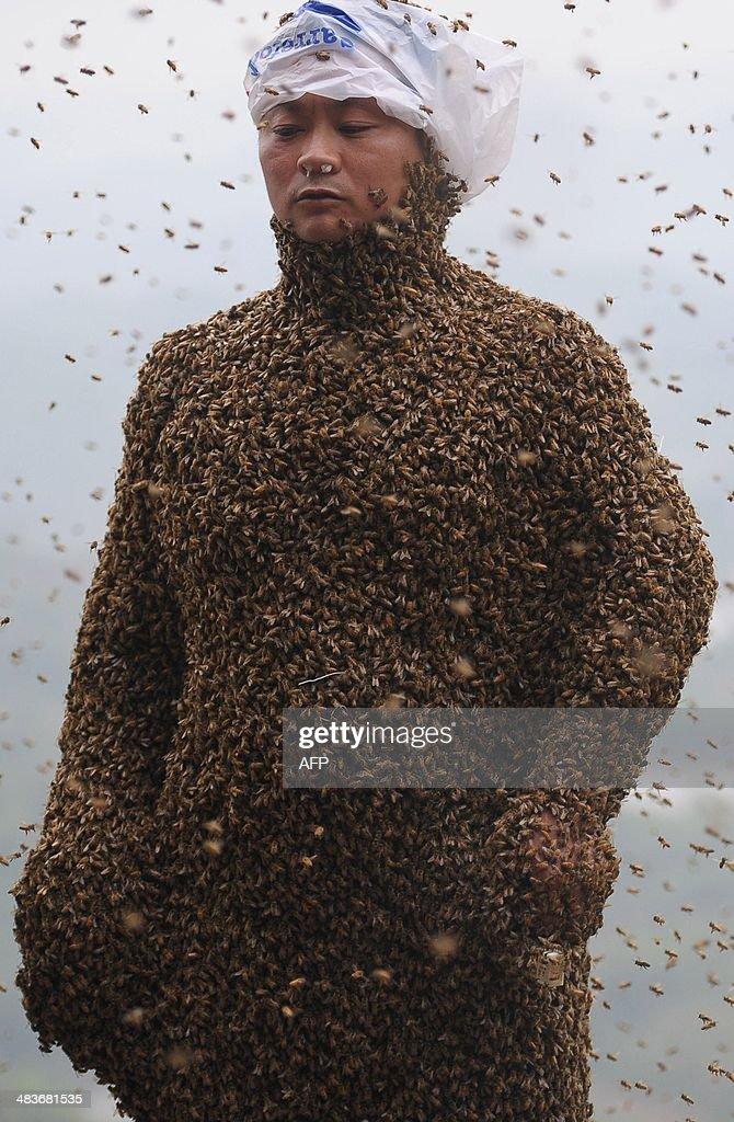 CHINA-PEOPLE-BEE WEARING : News Photo