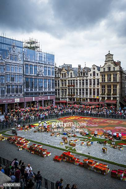 This picture taken on August 14 2014 shows the yearly Flower Carpet as it is set up on the Grand Place Grote Markt in Brussels AFP PHOTO / BELGA /...