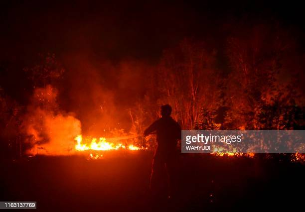 This picture taken on August 21 2019 shows an Indonesian firefighter battling a forest fire in Pekanbaru Riau Indonesian authorities are deploying...