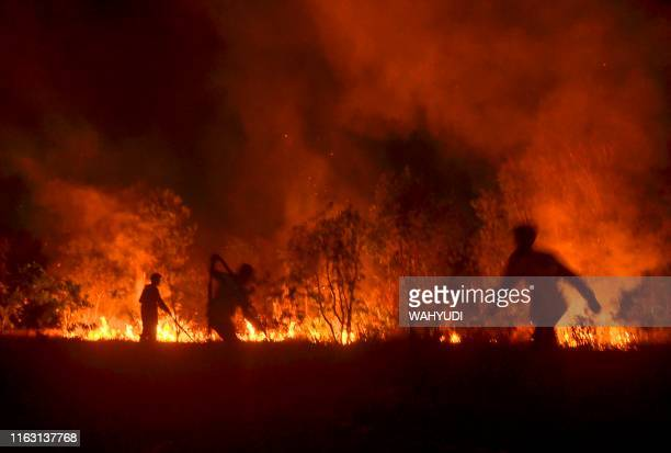 This picture taken on August 21 2019 shows Indonesian firefighters battling a forest fire in Pekanbaru Riau Indonesian authorities are deploying...