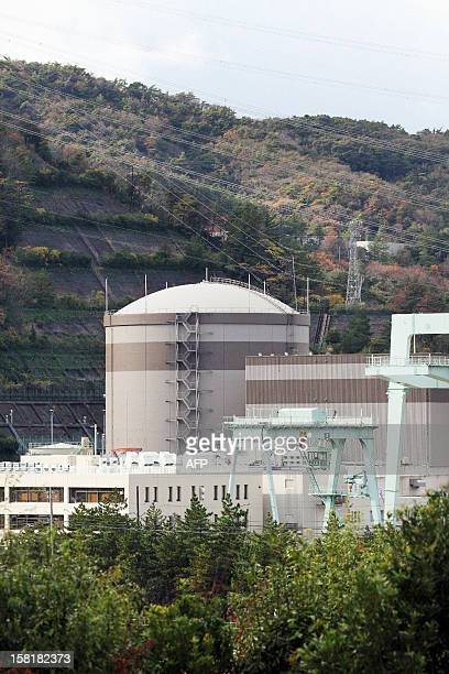 This picture taken on December 1 2012 shows Japan Atomic Power Company's Tsuruga nuclear power plant unit one reactor building in Fukui prefecture...