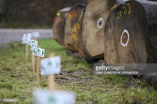 This picture taken on December 11, 2020 shows Darney oak logs sold, in Darney, eastern France.