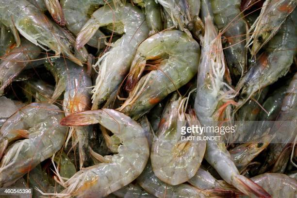 This picture taken on December 12 2014 shows shrimps at the Rungis international market in Rungis AFP PHOTO / BLONDET ELIOT