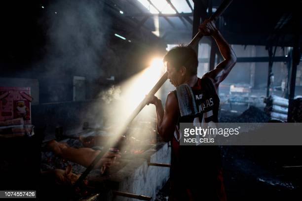 This picture taken on December 16 2018 shows a lechonero worker roasting pigs in a pit in Manila Row upon row of pigs on bamboo spits sizzle slowly...