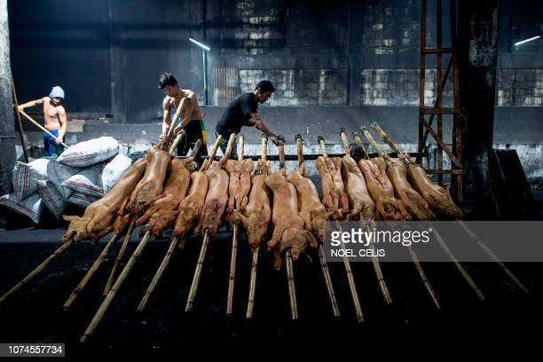 This picture taken on December 16 2018 shows lechoneros workers preparing pigs to be roasted in a pit in Manila Row upon row of pigs on bamboo spits...