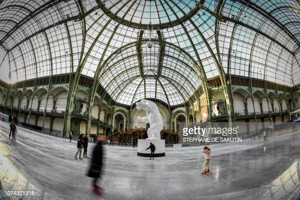 This picture taken on December 17 shows a general view of people on the ice skating rink hosted at the glass-roofed central hall of the Grand Palais...