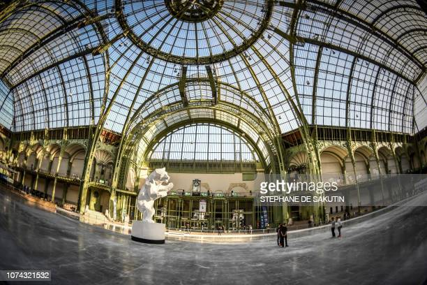 This picture taken on December 17 shows a general view of the ice skating rink hosted at the glass-roofed central hall of the Grand Palais in Paris.