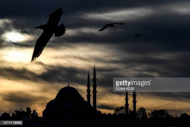 TOPSHOT This picture taken on december 24 2018 shows the silhouette of Suleymaniye mosque in Istanbul during sunset as seagulls fly over the golden...