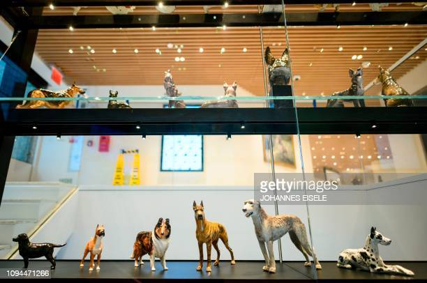 This picture taken on February 1 2019 in New York City shows a display with dog figures at The American Kennel Club Museum of the Dog Dogs play cameo...